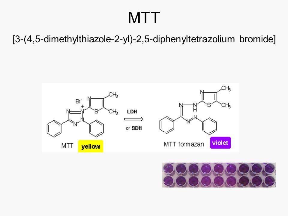 ΜΤΤ [3-(4,5-dimethylthiazole-2-yl)-2,5-diphenyltetrazolium bromide]