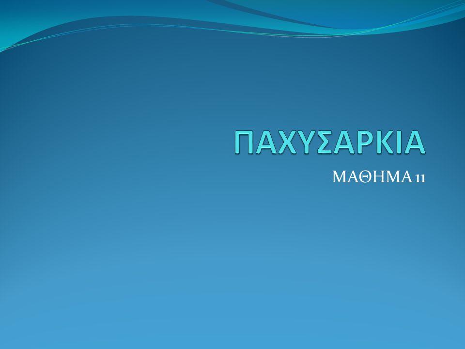 ΜΑΘΗΜΑ 11
