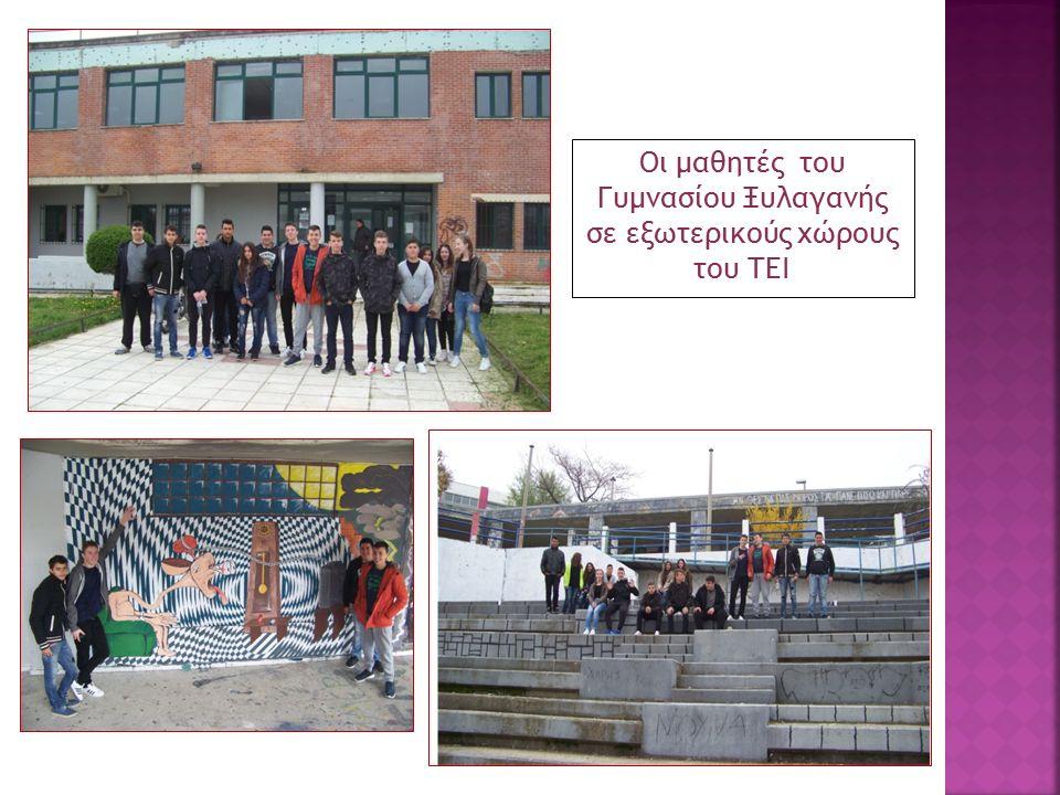 Οι μαθητές του Γυμνασίου Ξυλαγανής σε εξωτερικούς χώρους του ΤΕΙ