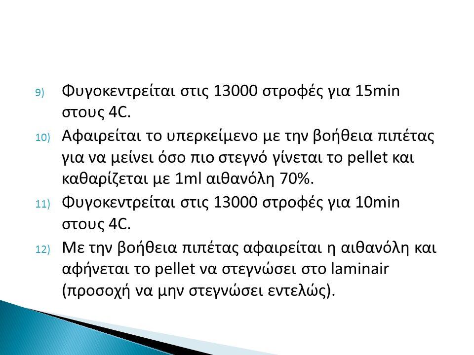 9) Φυγοκεντρείται στις 13000 στροφές για 15min στους 4C.