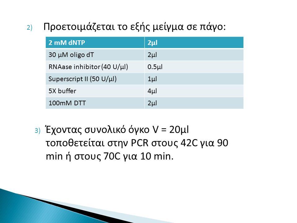 2) Προετοιμάζεται το εξής μείγμα σε πάγο: 2 mM dNTP2μl2μl 30 μΜ oligo dT2μl2μl RNAase inhibitor (40 U/μl)0.5μl Superscript II (50 U/μl)1μl1μl 5X buffer4μl4μl 100mM DTT2μl2μl 3) Έχοντας συνολικό όγκο V = 20μl τοποθετείται στην PCR στους 42C για 90 min ή στους 70C για 10 min.