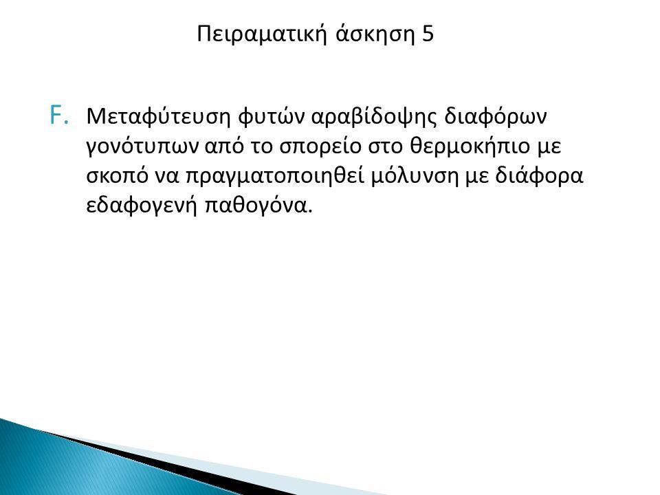 G.Καταπολέμηση του Aspergillus flavus με μη τοξικογόνα στελέχη.