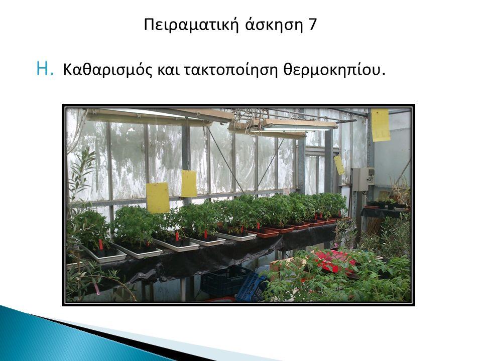 H. Καθαρισμός και τακτοποίηση θερμοκηπίου. Πειραματική άσκηση 7