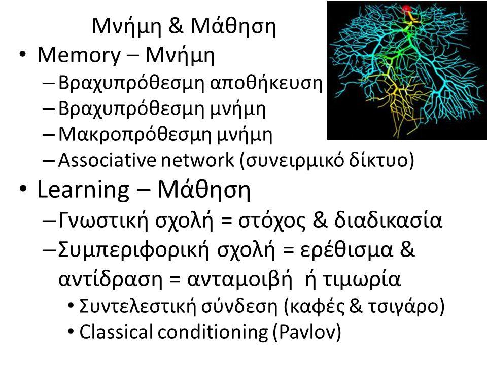 Μνήμη & Μάθηση Memory – Μνήμη – Βραχυπρόθεσμη αποθήκευση – Βραχυπρόθεσμη μνήμη – Μακροπρόθεσμη μνήμη – Associative network (συνειρμικό δίκτυο) Learning – Μάθηση – Γνωστική σχολή = στόχος & διαδικασία – Συμπεριφορική σχολή = ερέθισμα & αντίδραση = ανταμοιβή ή τιμωρία Συντελεστική σύνδεση (καφές & τσιγάρο) Classical conditioning (Pavlov)
