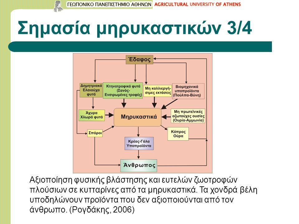 Σημασία μηρυκαστικών 3/4 Αξιοποίηση φυσικής βλάστησης και ευτελών ζωοτροφών πλούσιων σε κυτταρίνες από τα μηρυκαστικά.