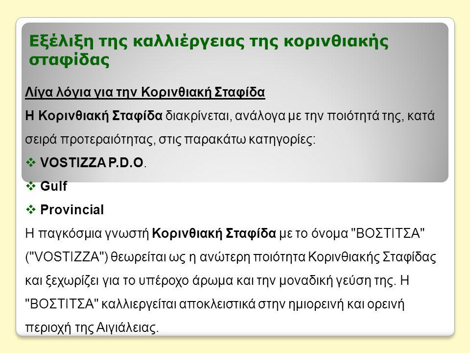 Εξέλιξη της καλλιέργειας της κορινθιακής σταφίδας Λίγα λόγια για την Κορινθιακή Σταφίδα Η Κορινθιακή Σταφίδα διακρίνεται, ανάλογα με την ποιότητά της, κατά σειρά προτεραιότητας, στις παρακάτω κατηγορίες:  VOSTIZZA P.D.O.