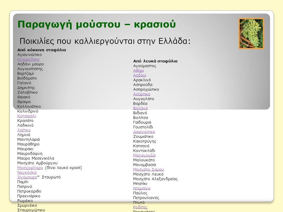 Παραγωγή μούστου – κρασιού Ποικιλίες που καλλιεργούνται στην Ελλάδα: Από κόκκινα σταφύλια Αγιαννιώτικο Αγιωργίτικο Αηδάνι μαύρο Αυγουστιάτης Βερτζαμί Βοϊδόματο Γαλανό Δημινίτης Ζαλοβίτικο Θειακό Θράψα Κολλινιάτικο Κολινδρινό Κοτσιφάλι Κρασάτο Λαδικινό Λιάτικο Λημνιό Μαντηλαριά Μαυράθηρο Μαυράκι Μαυροδάφνη Μαύρο Μεσενικόλα Μοσχάτο Αμβούργου ΜοσχοφίλεροΜοσχοφίλερο (δίνει λευκό κρασί) Νεγκόσκα ΞινόμαυροΞινόμαυρο* Σταυρωτό Παμίτι Πατρινό Πετροκόριθο Πρεκνιάρικο Ρωμέικο Σμυρνέικο Σταυροχιώτικο Συκιώτης Τσαρδάνα Φειδιά Φωκιανό Χαραμπραΐμι Από λευκά σταφύλια Αγούμαστος Αθήρι Αηδάνι Αρακλινό Ασπρούδα Ασπροχιώτικο Ασύρτικο Αυγουλάτο Βαρδέα Βηλάνα Βιδιανό Βολίτσα Γαϊδουριά Γουστολίδι Δαφνιώτικο Ζουμιάτικο Κακοτρύγης Κατσανό Κοντοκλάδι Μαλαγουζιά Μαλουκάτο Μονεμβασιά Μοσχάτο Σάμου Μοσχάτο Λευκό Μοσχάτο Αλεξανδρείας Μπατίκι Ντεμπίνα Παύλος Πετρουλιανός Πλυτό Ροδίτης Ροκανιάρης Ρομπόλα Σαββατιανό Τσαούσι