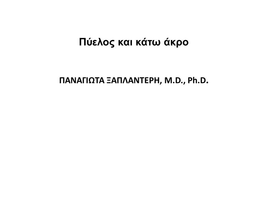 Πύελος και κάτω άκρο ΠΑΝΑΓΙΩΤΑ ΞΑΠΛΑΝΤΕΡΗ, M.D., Ph.D.