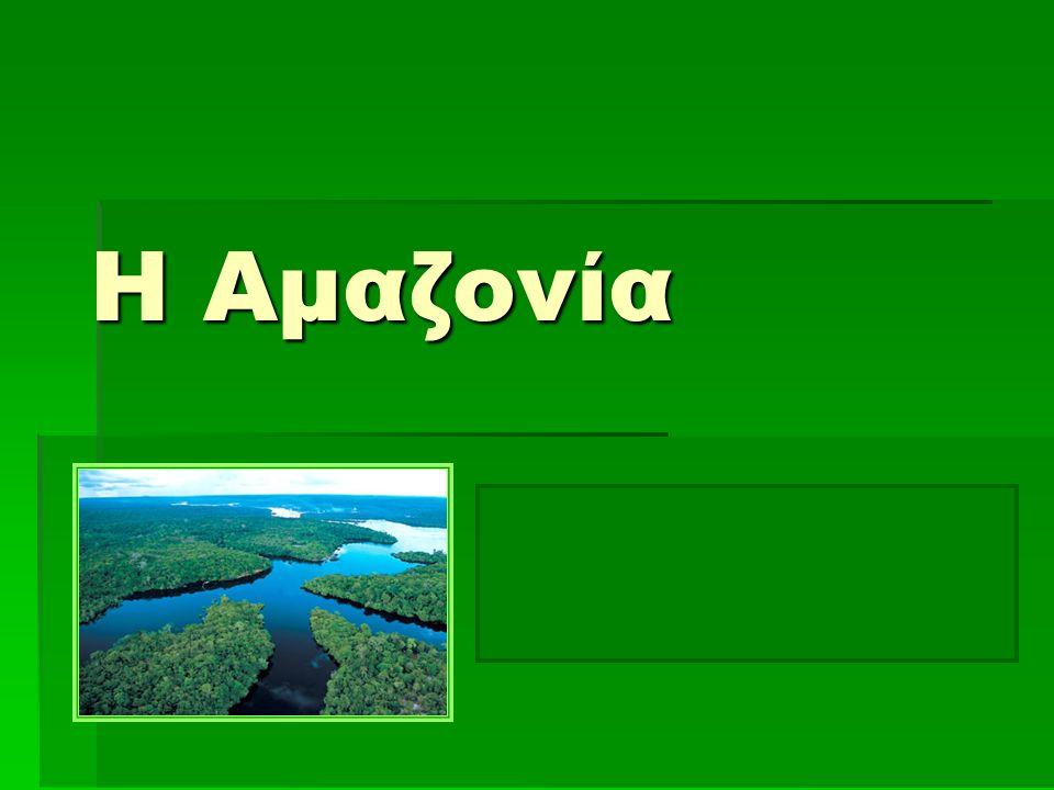 2 Δάσος του Αμαζονίου (1)  Τα δάση του Αμαζονίου έχουν πολύ μεγάλη σημασία για ολόκληρη την ανθρωπότητα.