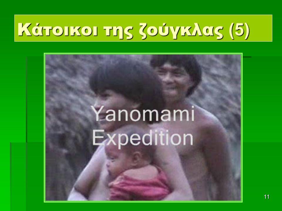 11 Κάτοικοι της ζούγκλας (5)
