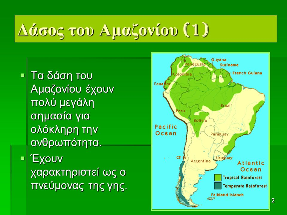 23 Καταστροφή του δάσους (2)  Χιλιάδες δέντρα κόβονται κάθε χρόνο για τη δημιουργία καλλιεργήσιμης γης και βοσκότοπων.