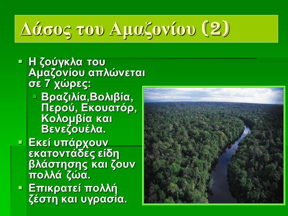 3 Δάσος του Αμαζονίου (2)  Η ζούγκλα του Αμαζονίου απλώνεται σε 7 χώρες:  Βραζιλία,Βολιβία, Περού, Εκουατόρ, Κολομβία και Βενεζουέλα.
