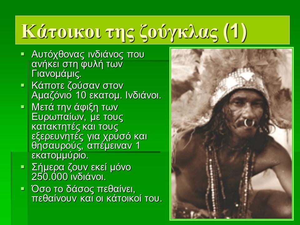 7 Κάτοικοι της ζούγκλας (1)  Αυτόχθονας ινδιάνος που ανήκει στη φυλή των Γιανομάμις.