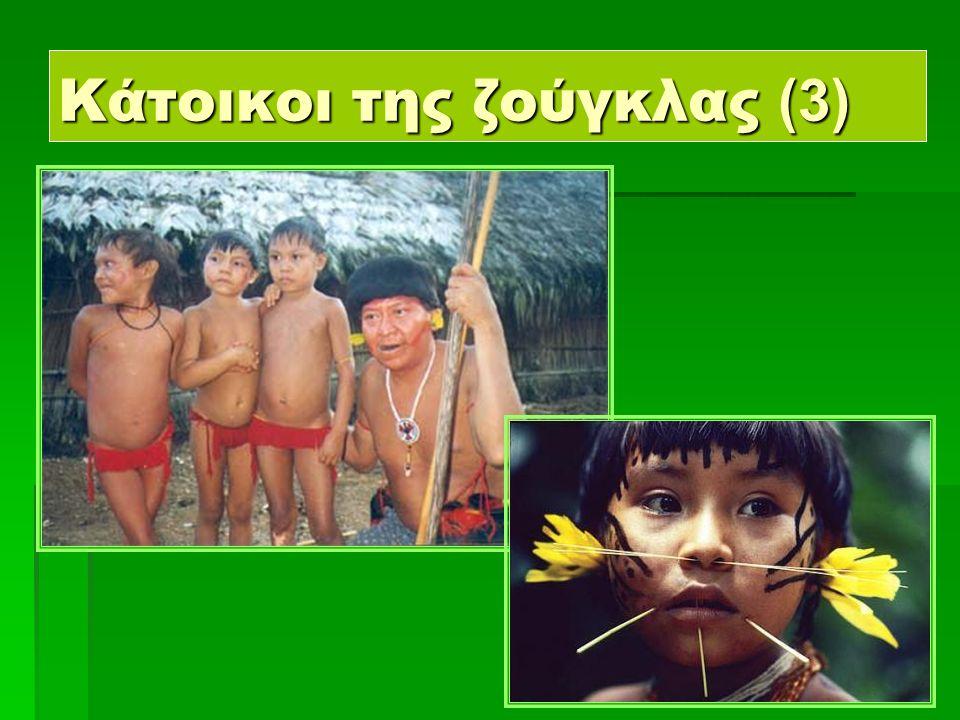 10 Κάτοικοι της ζούγκλας (4)  Αυτοί είναι ντόπιοι Ινδιάνοι.