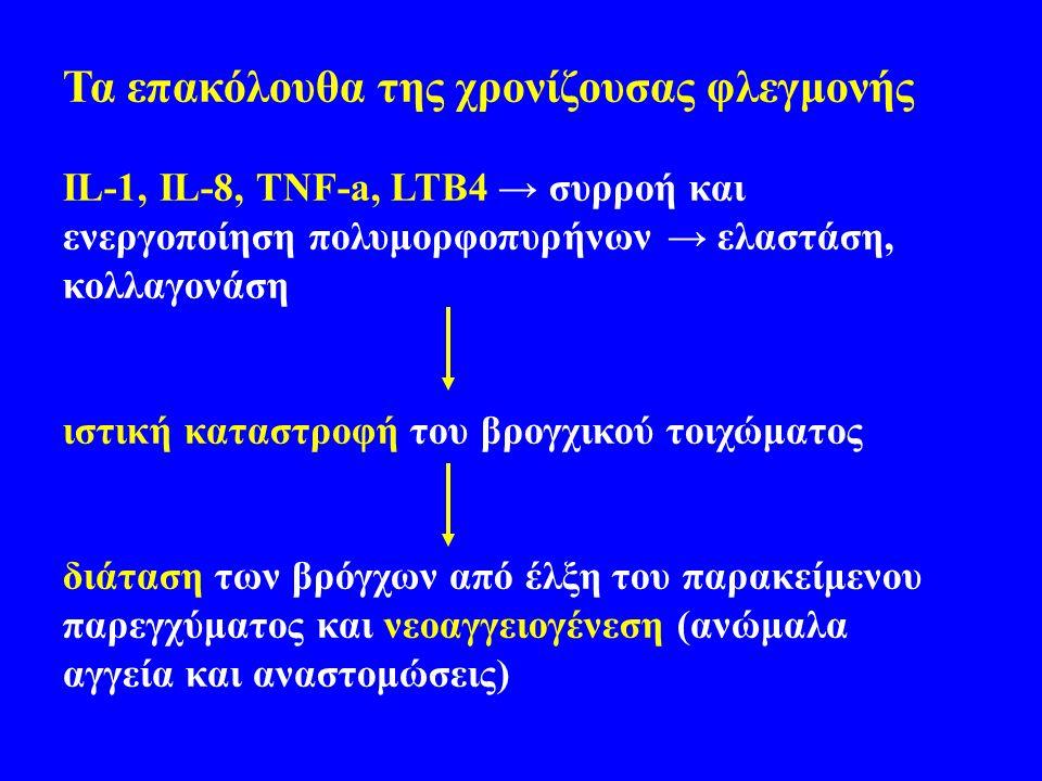 Τα επακόλουθα της χρονίζουσας φλεγμονής IL-1, IL-8, TNF-a, LTB4 → συρροή και ενεργοποίηση πολυμορφοπυρήνων → ελαστάση, κολλαγονάση ιστική καταστροφή του βρογχικού τοιχώματος διάταση των βρόγχων από έλξη του παρακείμενου παρεγχύματος και νεοαγγειογένεση (ανώμαλα αγγεία και αναστομώσεις)