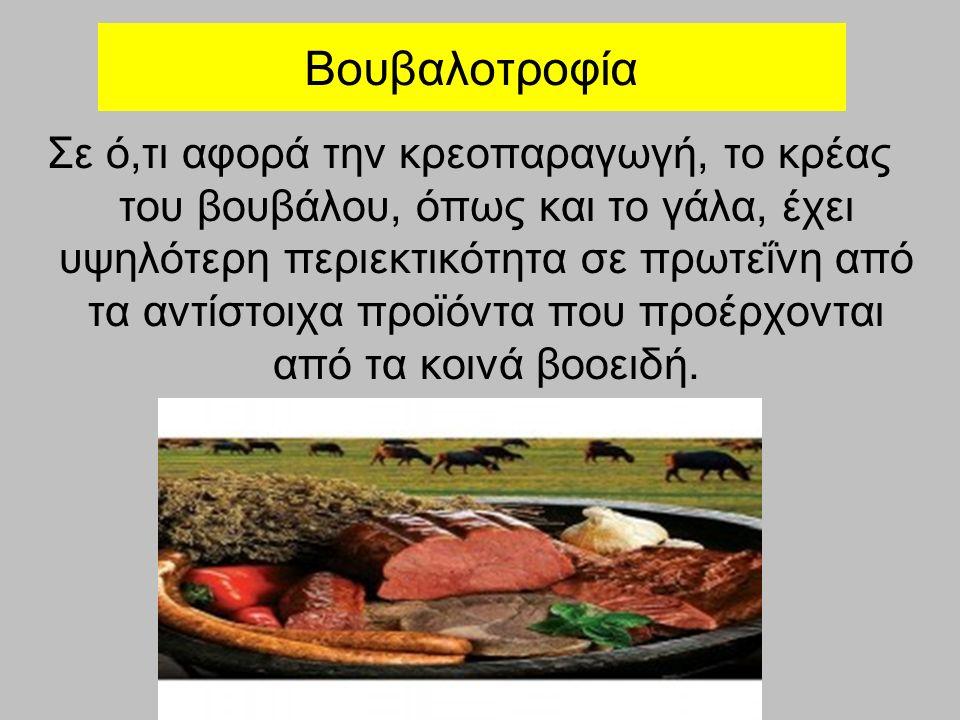 Βουβαλοτροφία Σε ό,τι αφορά την κρεοπαραγωγή, το κρέας του βουβάλου, όπως και το γάλα, έχει υψηλότερη περιεκτικότητα σε πρωτεΐνη από τα αντίστοιχα προϊόντα που προέρχονται από τα κοινά βοοειδή.