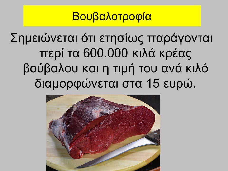 Βουβαλοτροφία Σημειώνεται ότι ετησίως παράγονται περί τα 600.000 κιλά κρέας βούβαλου και η τιμή του ανά κιλό διαμορφώνεται στα 15 ευρώ.