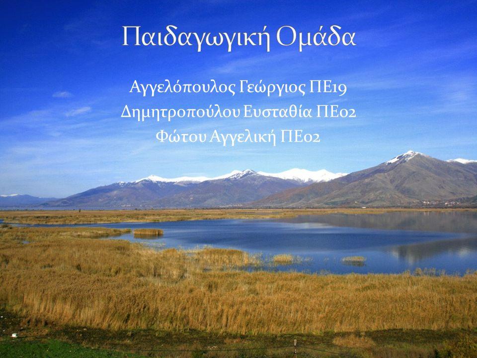 Αγγελόπουλος Γεώργιος ΠΕ19 Δημητροπούλου Ευσταθία ΠΕ02 Φώτου Αγγελική ΠΕ02