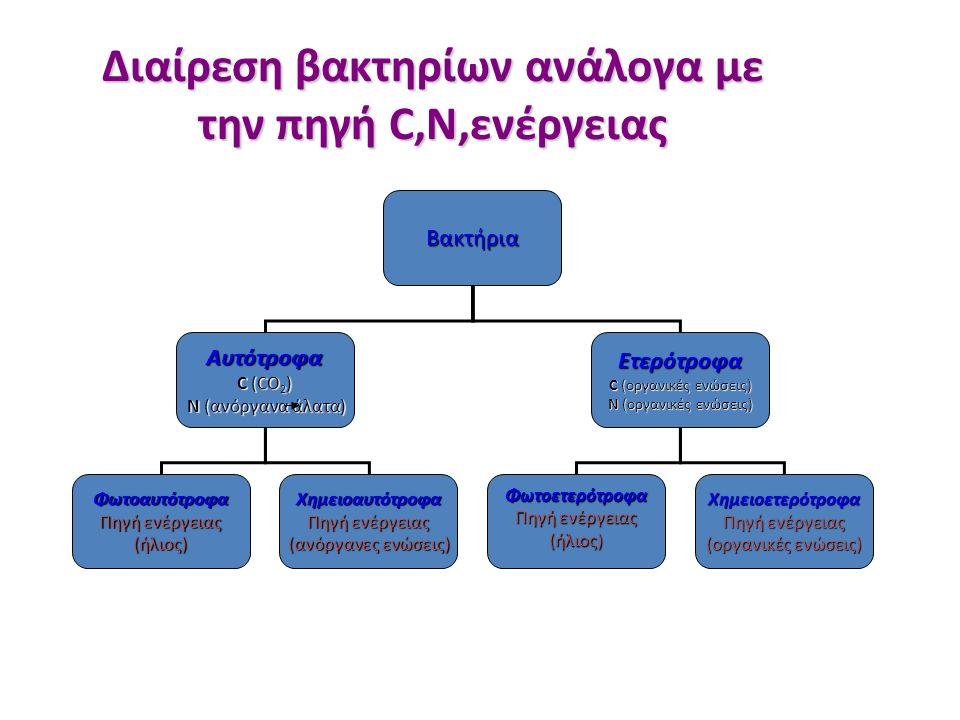 Διαίρεση βακτηρίων ανάλογα με την πηγή C,N,ενέργειας Βακτήρια Αυτότροφα C (CO 2 ) N (ανόργανα άλατα) N (ανόργανα άλατα)Ετερότροφα C (οργανικές ενώσεις) N (οργανικές ενώσεις) Φωτοαυτότροφα Πηγή ενέργειας (ήλιος)Χημειοαυτότροφα (ανόργανες ενώσεις) Φωτοετερότροφα Πηγή ενέργειας (ήλιος)Χημειοετερότροφα (οργανικές ενώσεις)