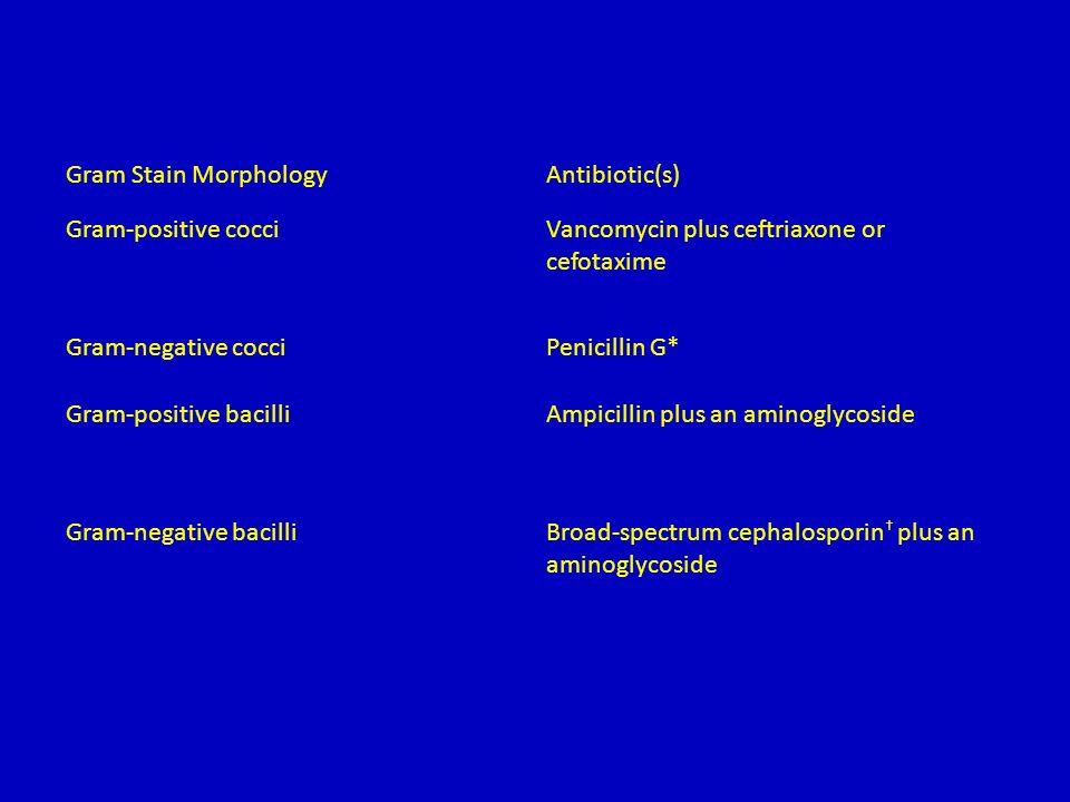 Gram Stain MorphologyAntibiotic(s) Gram-positive cocciVancomycin plus ceftriaxone or cefotaxime Gram-negative cocciPenicillin G* Gram-positive bacilliAmpicillin plus an aminoglycoside Gram-negative bacilliBroad-spectrum cephalosporin † plus an aminoglycoside