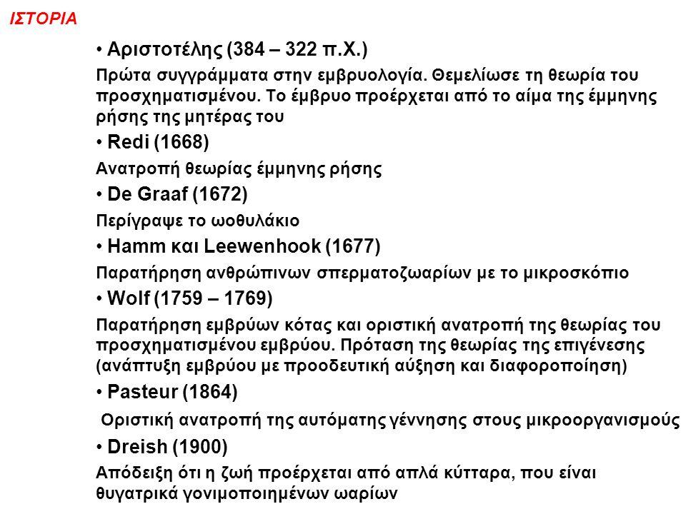 IΣΤΟΡΙΑ Αριστοτέλης (384 – 322 π.Χ.) Πρώτα συγγράμματα στην εμβρυολογία.