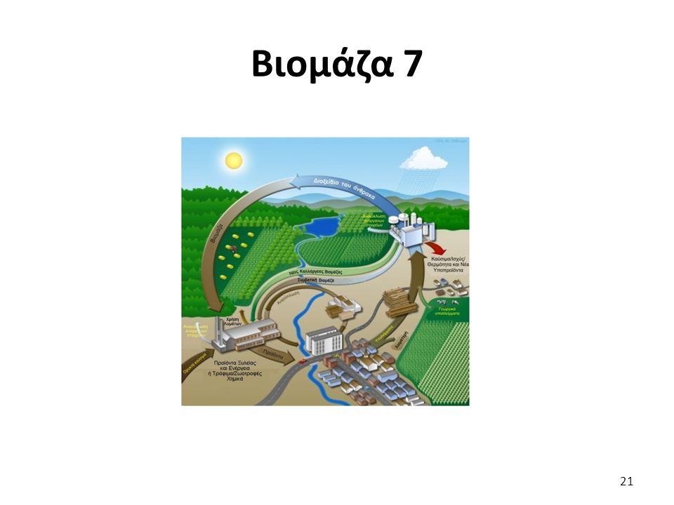 Βιομάζα 7 21