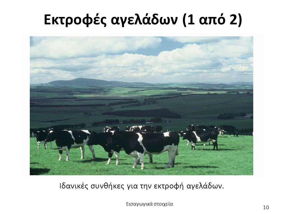 Εκτροφές αγελάδων (1 από 2) Ιδανικές συνθήκες για την εκτροφή αγελάδων. Εισαγωγικά στοιχεία 10
