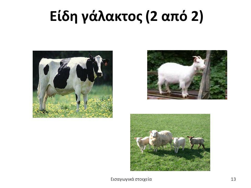 Είδη γάλακτος (2 από 2) Εισαγωγικά στοιχεία 13