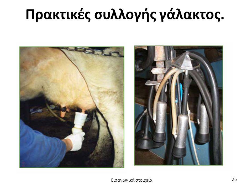 Πρακτικές συλλογής γάλακτος. Εισαγωγικά στοιχεία 25