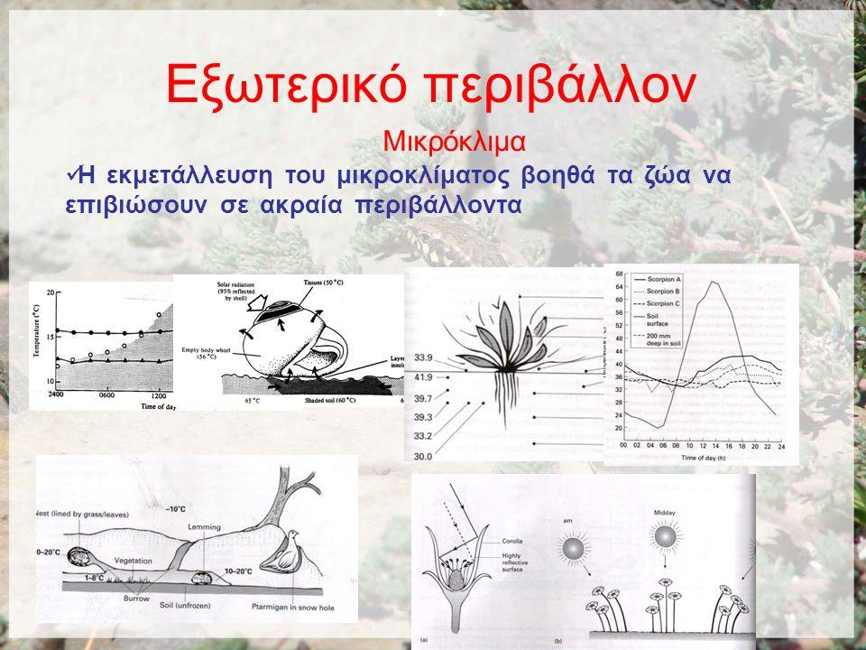 Χερσαία οικοσυστήματα Η θερμοκρασία και η βροχόπτωση καθορίζουν τους κυρίους τύπους των χερσαίων οικοσυστημάτων.