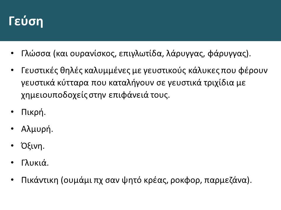 Γεύση Γλώσσα (και ουρανίσκος, επιγλωτίδα, λάρυγγας, φάρυγγας).