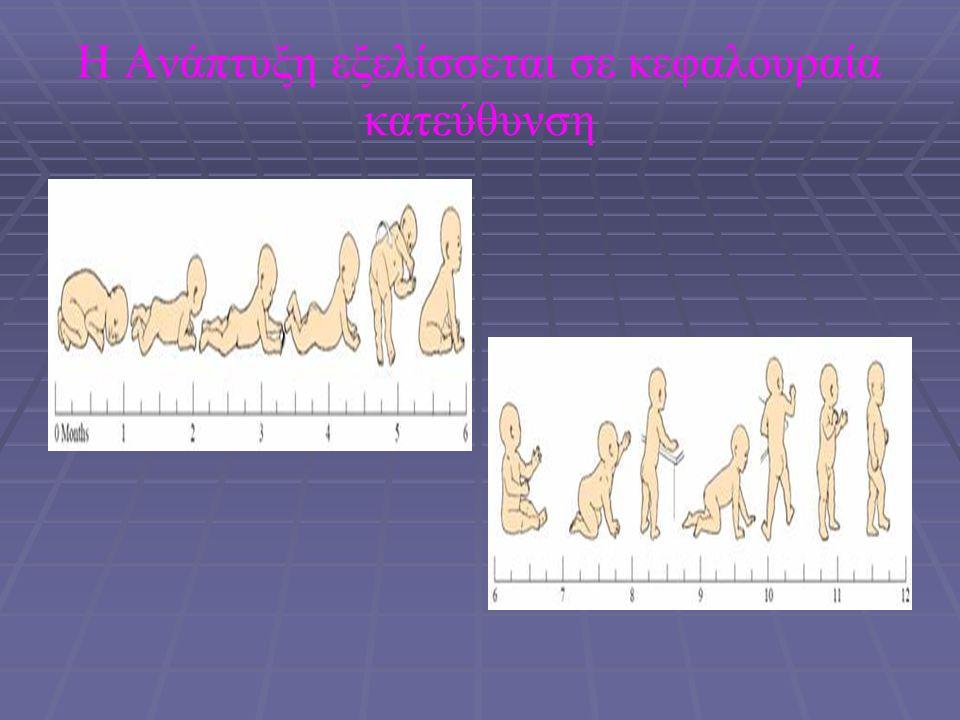 ΕΛΕΓΧΟΣ  Δυσμορφία  Ατροφία  Μυική μάζα→ ατροφία σε περιφερική νωτιαία ατροφία  Ευαισθησία στην ψηλάφηση των μυών  Λεπτές μικρό-ινιδικές συσπάσεις γλώσσας  Ανώμαλες κινήσεις  Τικ  Τρόμος, αθετωσικές, χορεία  Ο τρόμος επηρεάζεται από ενεργητικές κινήσεις.