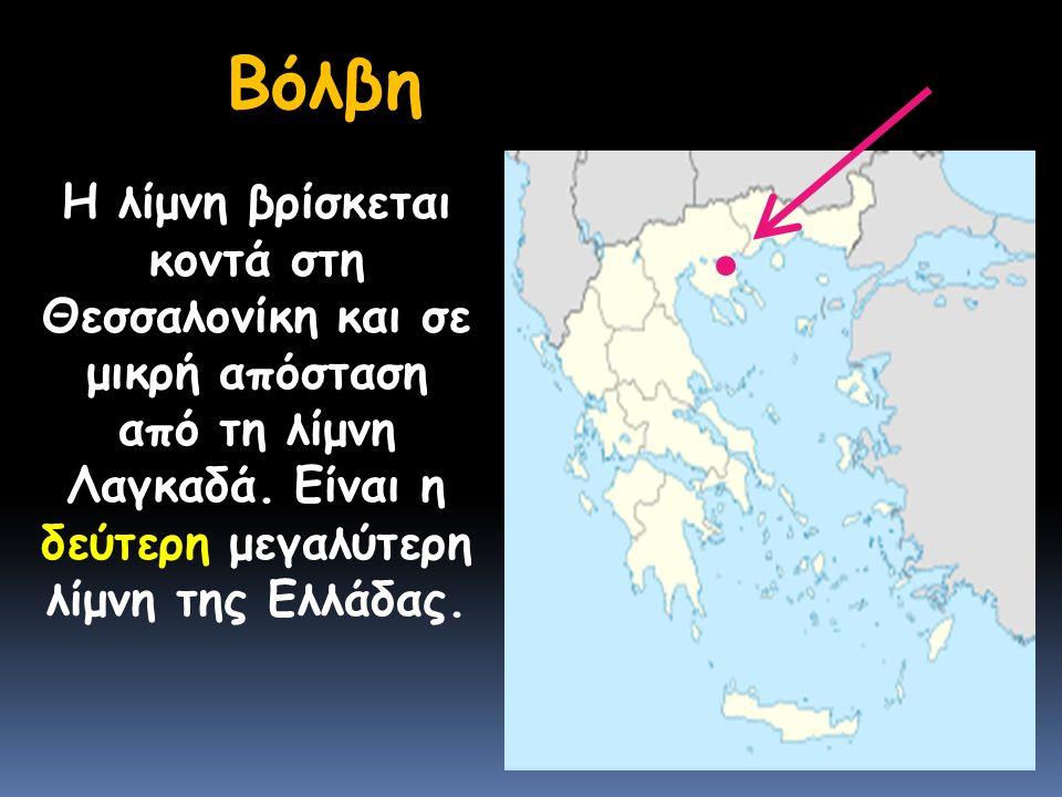 Βόλβη Η λίμνη βρίσκεται κοντά στη Θεσσαλονίκη και σε μικρή απόσταση από τη λίμνη Λαγκαδά.