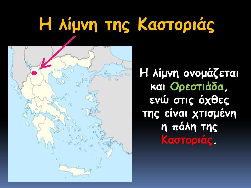 Η λίμνη της Καστοριάς Η λίμνη ονομάζεται και Ορεστιάδα, ενώ στις όχθες της είναι χτισμένη η πόλη της Καστοριάς.