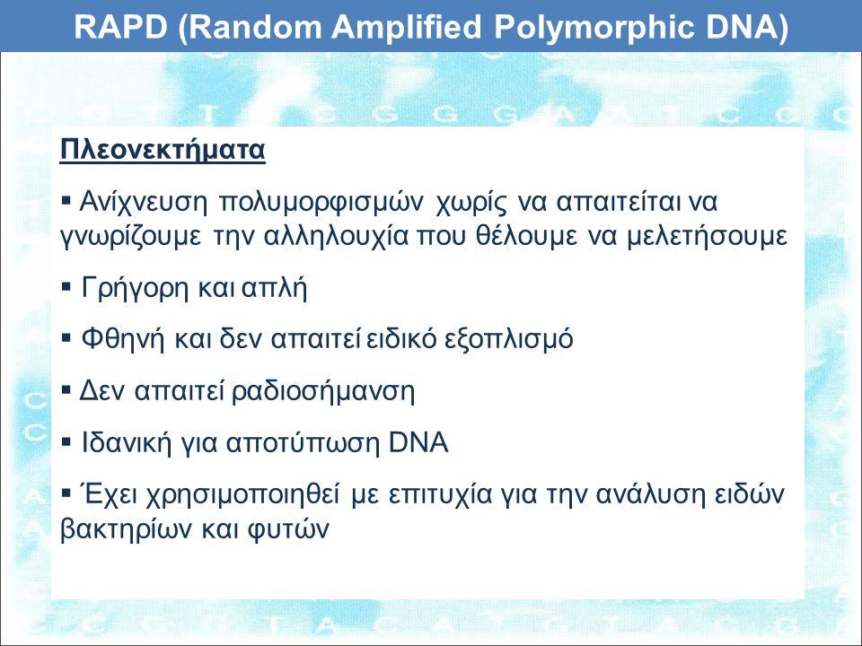 Πλεονεκτήματα  Ανίχνευση πολυμορφισμών χωρίς να απαιτείται να γνωρίζουμε την αλληλουχία που θέλουμε να μελετήσουμε  Γρήγορη και απλή  Φθηνή και δεν απαιτεί ειδικό εξοπλισμό  Δεν απαιτεί ραδιοσήμανση  Ιδανική για αποτύπωση DNA  Έχει χρησιμοποιηθεί με επιτυχία για την ανάλυση ειδών βακτηρίων και φυτών