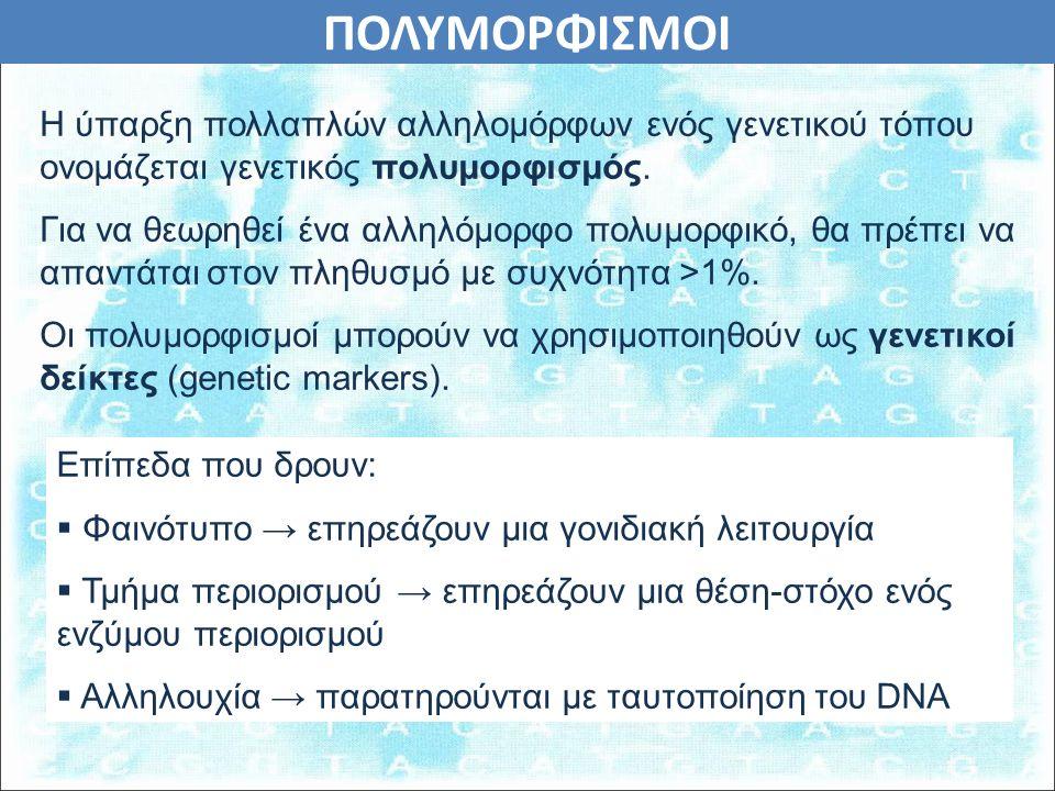 ΠΟΛΥΜΟΡΦΙΣΜΟΙ Η ύπαρξη πολλαπλών αλληλομόρφων ενός γενετικού τόπου ονομάζεται γενετικός πολυμορφισμός.