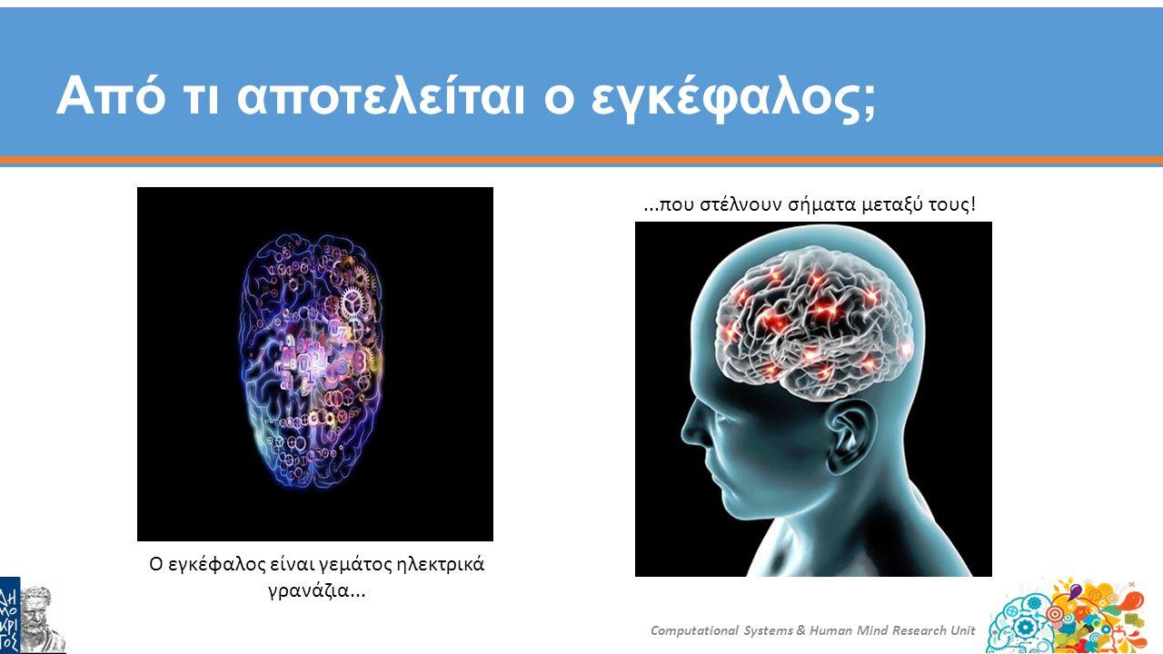 Νευρώνες = Τα γρανάζια του εγκεφάλου Computational Systems & Human Mind Research Unit Τα «καλώδια» μεταξύ των νευρώνων τα ονομάζουμε συνάψεις