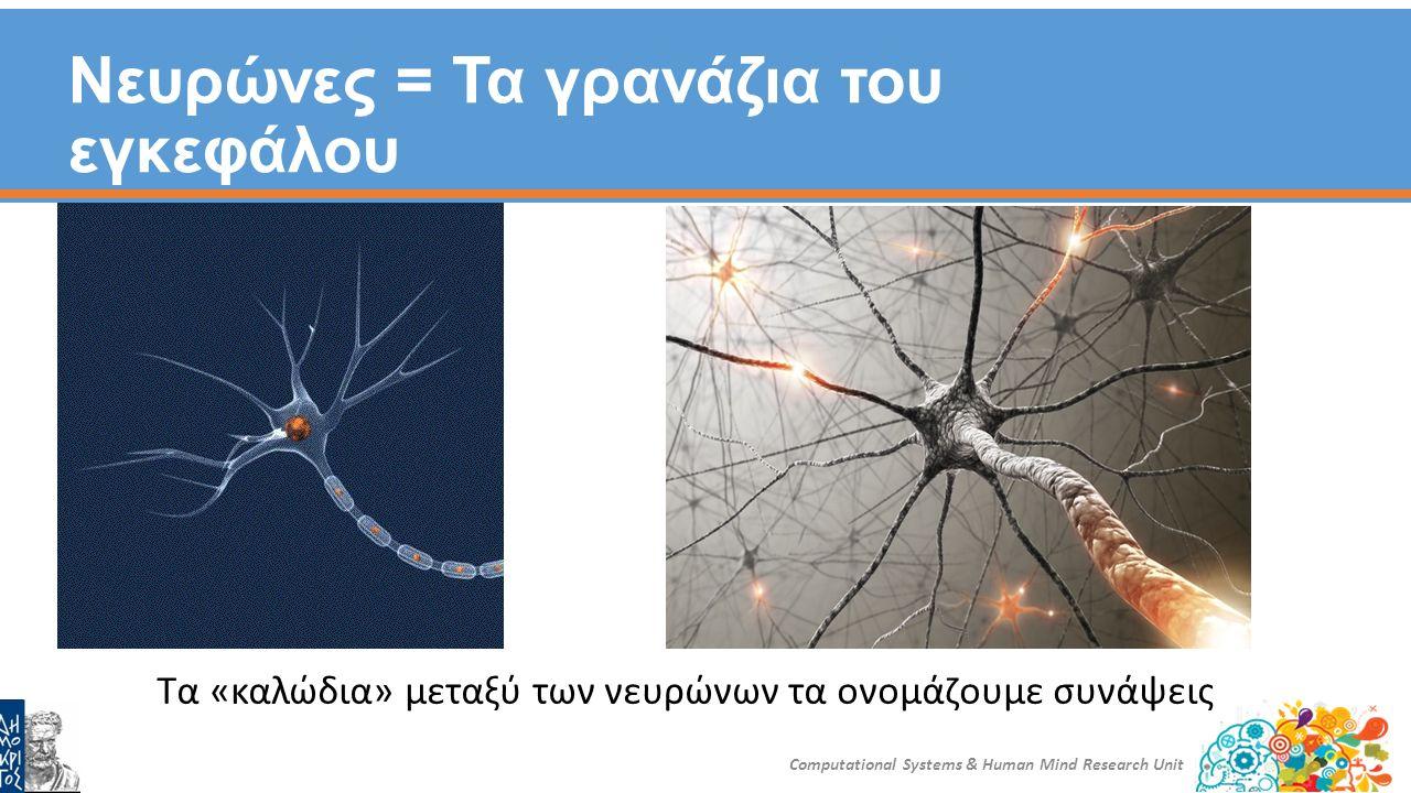 Πόσο καλή «μηχανή» είναι ο εγκέφαλος; Computational Systems & Human Mind Research Unit