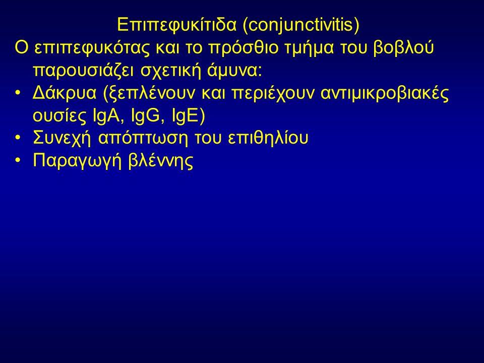 Επιπεφυκίτιδα (conjunctivitis) Ο επιπεφυκότας και το πρόσθιο τμήμα του βοβλού παρουσιάζει σχετική άμυνα: Δάκρυα (ξεπλένουν και περιέχουν αντιμικροβιακές ουσίες IgΑ, IgG, IgE) Συνεχή απόπτωση του επιθηλίου Παραγωγή βλέννης