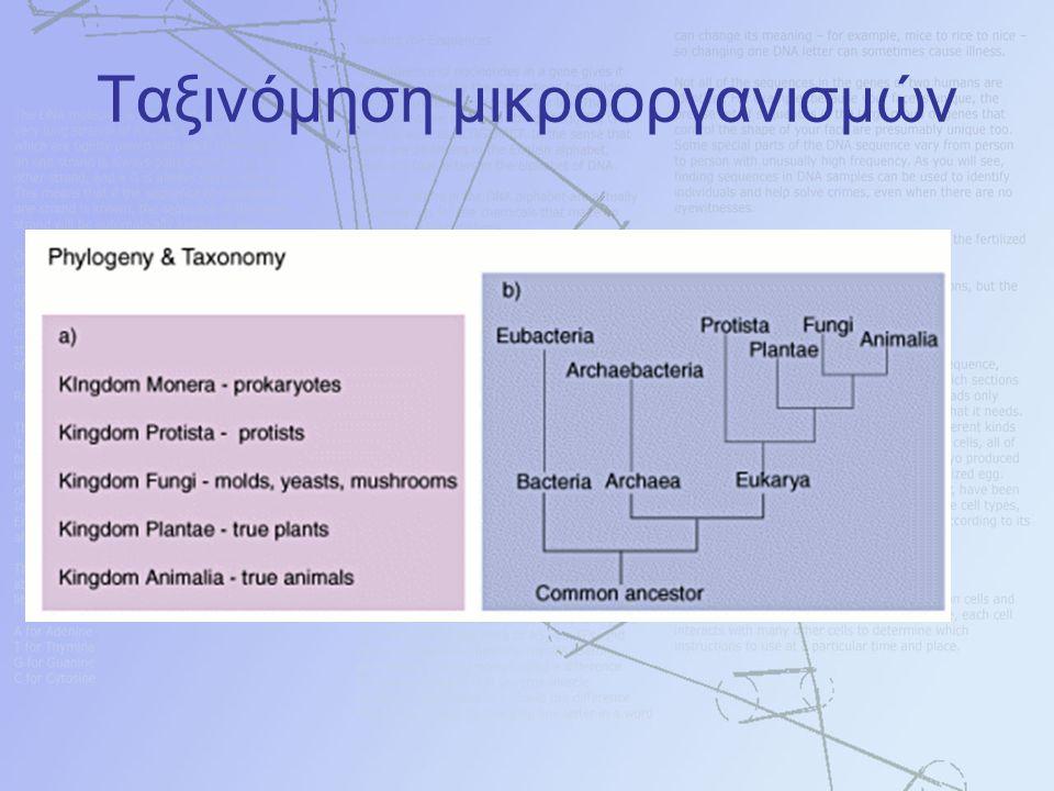 Ταξινόμηση μικροοργανισμών
