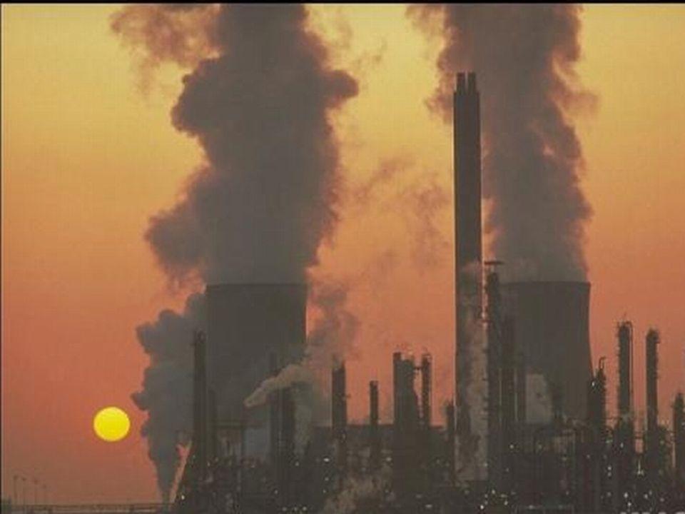  Η φάση της μεθανογένεσης διαρκεί πολλά χρόνια, πάνω από 10 χρόνια και μπορεί να λήξει μετά από πολλές δεκαετίες  Το παραγόμενο αέριο μίγμα περιέχει κυρίως μεθάνιο άνω του 55% και δευτερευόντως διοξείδιο του άνθρακα άνω του 40%  Υπάρχουν και άλλα αέρια, δύσοσμα όπως υδρόθειο, άλλα θειούχα, αλδεΰδες και άλλα οργανικά που είναι αέριοι ρύποι  Το μίγμα αυτό των αερίων ονομάζεται βιοαέριο και είναι καύσιμο, κυρίως λόγω του μεθανίου.
