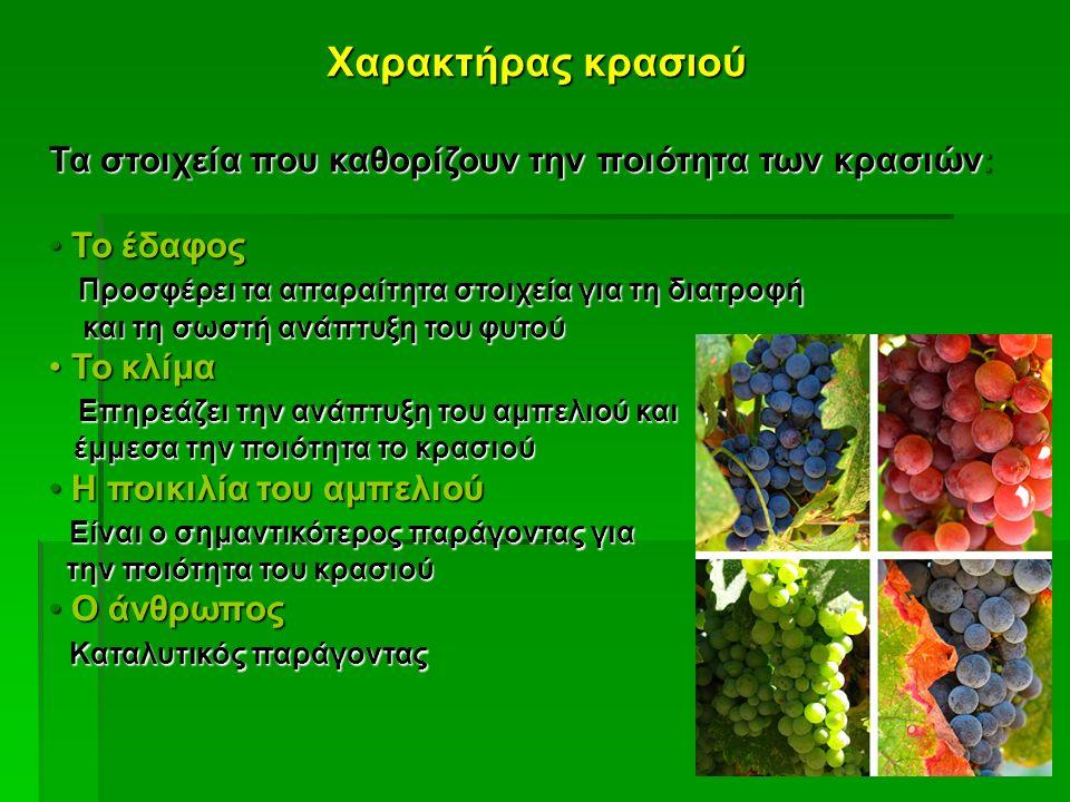 Χαρακτήρας κρασιού Τα στοιχεία που καθορίζουν την ποιότητα των κρασιών: Το έδαφος Το έδαφος Προσφέρει τα απαραίτητα στοιχεία για τη διατροφή Προσφέρει