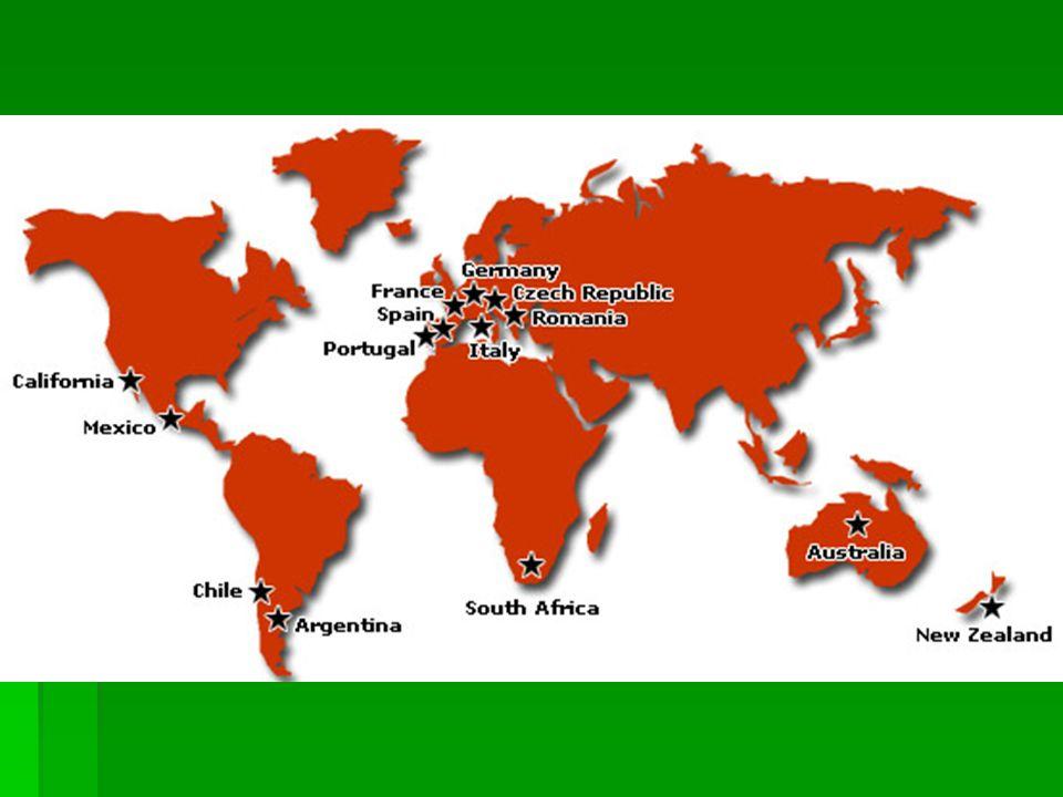 Το κρασί στην εποχή μας Περίπου 37 εκατομμύρια άτομα στον κόσμο απασχολούνται με την : Αμπελοκαλλιέργεια – Παραγωγή κρασιού – Διάθεση Στην Ελλάδα οι εκτάσεις που διατίθενται για την αμπελο- καλλιέργεια είναι 870 740 στρέμματα, ενώ η Ισπανία διαθέτει 15 370 000 στρέμματα Σύμφωνα με το Διεθνή Οργανισμό Οίνου και Αμπέλου στη χώρα μας παράγονται 4 532 ΗL κρασιού 1 HL = 100 λίτρα 1 HL = 100 λίτρα