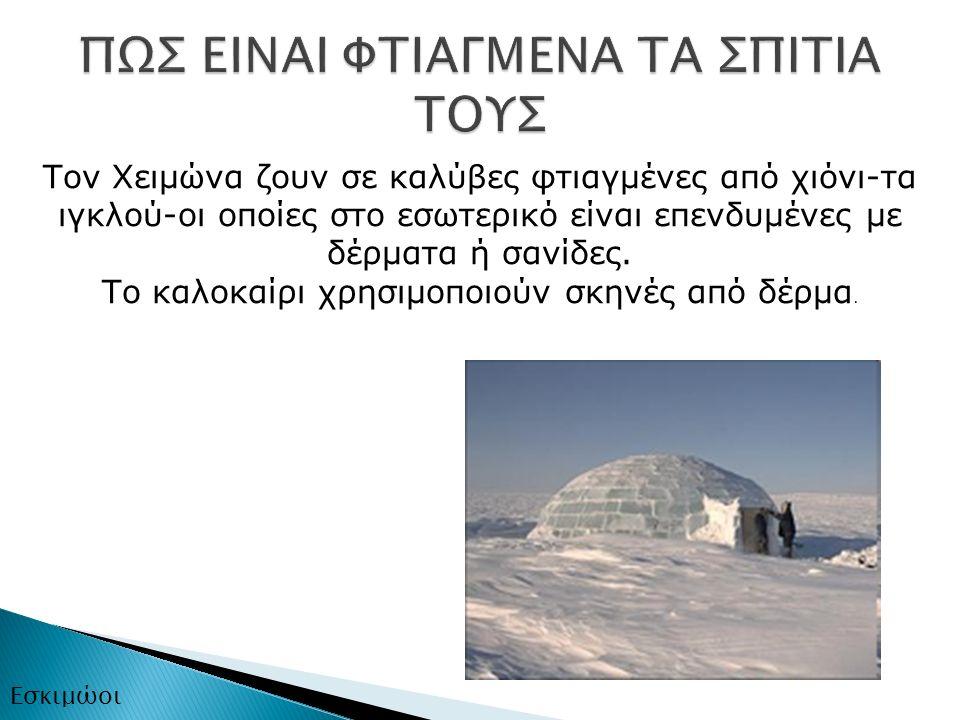 Τον Χειμώνα ζουν σε καλύβες φτιαγμένες από χιόνι-τα ιγκλού-οι οποίες στο εσωτερικό είναι επενδυμένες με δέρματα ή σανίδες.