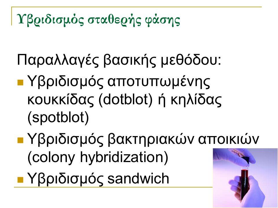 Υβριδισμός σταθερής φάσης Παραλλαγές βασικής μεθόδου: Υβριδισμός αποτυπωμένης κουκκίδας (dotblot) ή κηλίδας (spotblot) Υβριδισμός βακτηριακών αποικιών