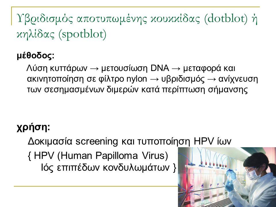 Υβριδισμός αποτυπωμένης κουκκίδας (dotblot) ή κηλίδας (spotblot) χρήση: Δοκιμασία screening και τυποποίηση HPV ίων { HPV (Human Papilloma Virus) Ιός ε