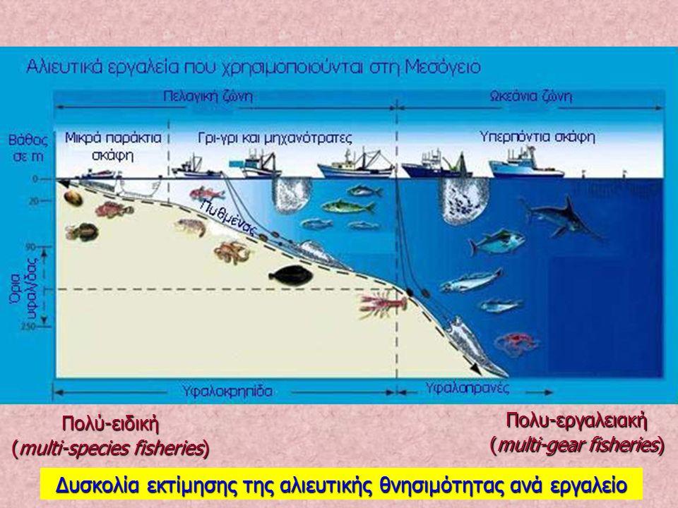 Πολύ-ειδική (multi-species fisheries) Πολυ-εργαλειακή (multi-gear fisheries) Δυσκολία εκτίμησης της αλιευτικής θνησιμότητας ανά εργαλείο
