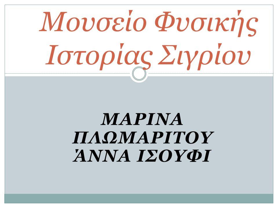 ΜΑΡΙΝΑ ΠΛΩΜΑΡΙΤΟΥ ΆΝΝΑ ΙΣΟΥΦΙ Μουσείο Φυσικής Ιστορίας Σιγρίου
