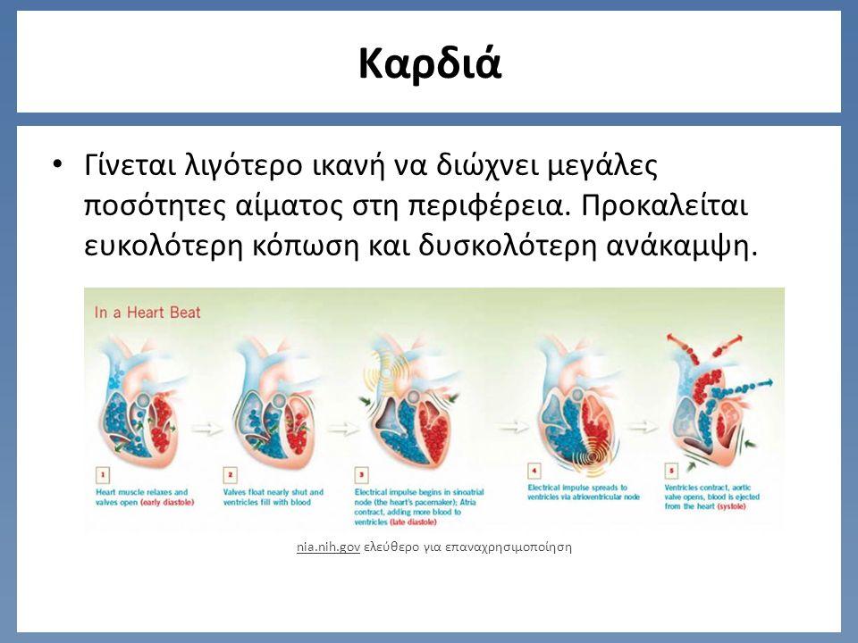 Καρδιά Γίνεται λιγότερο ικανή να διώχνει μεγάλες ποσότητες αίματος στη περιφέρεια.