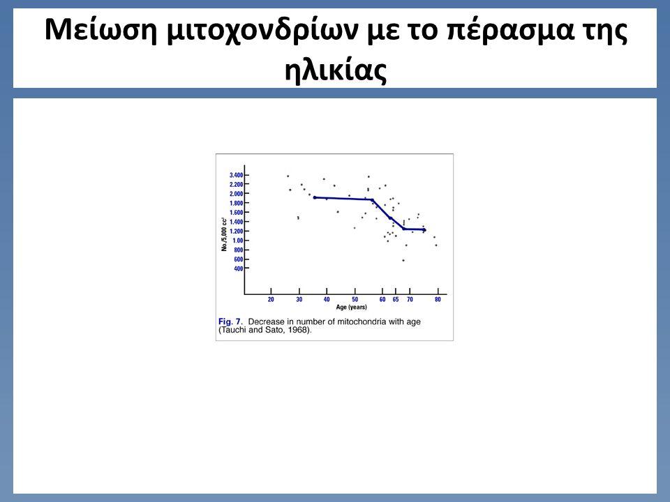 Μείωση μιτοχονδρίων με το πέρασμα της ηλικίας